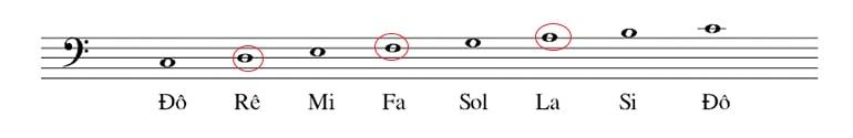 Cách đọc nốt nhạc cơ bản
