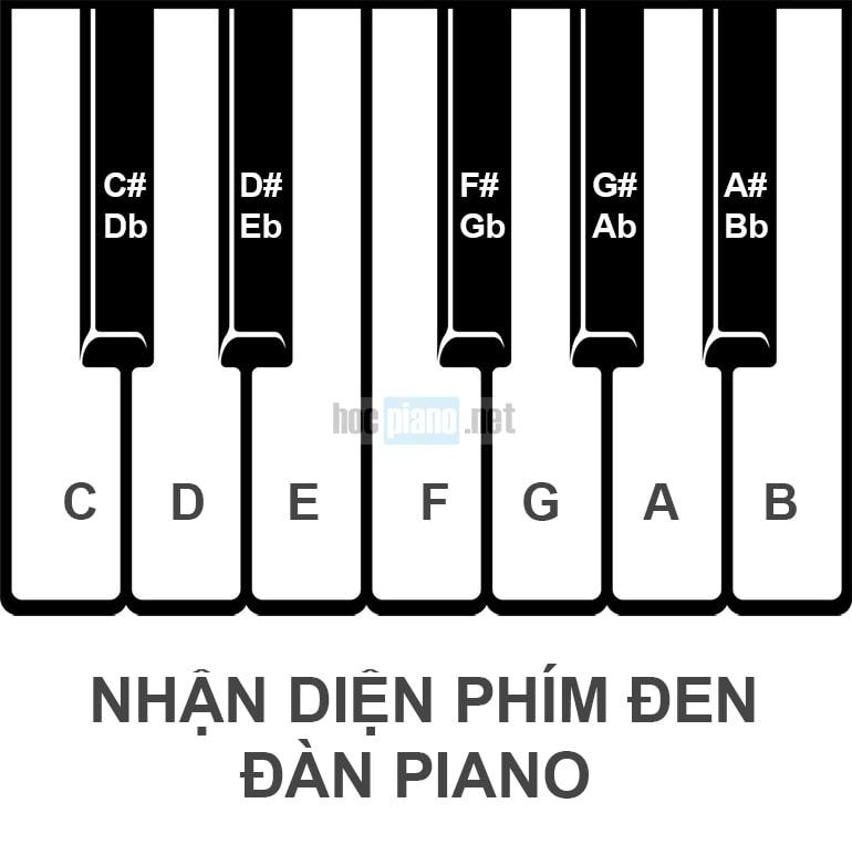 Vị trí phím đen và nốt nhạc tương ứng